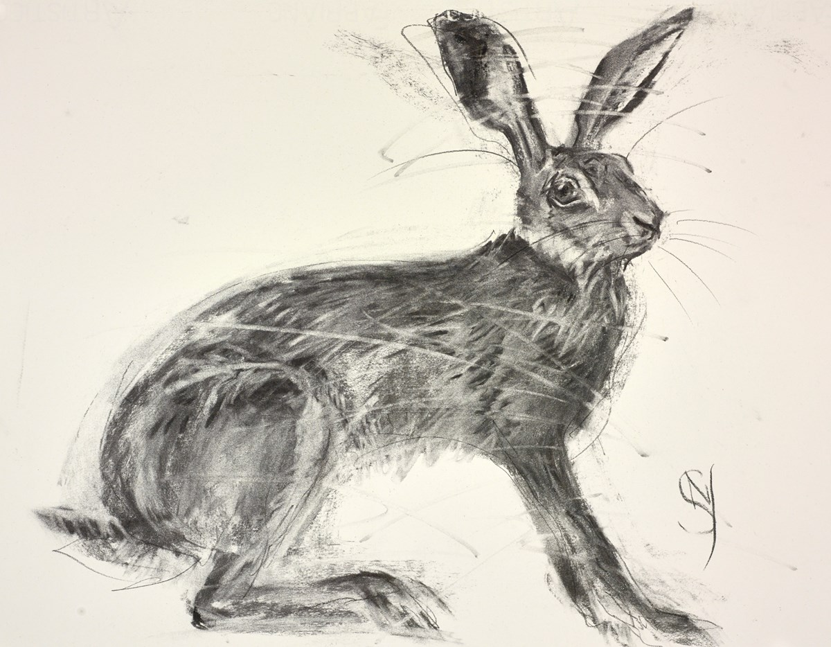 Alert by april shepherd -  sized 17x14 inches. Available from Whitewall Galleries